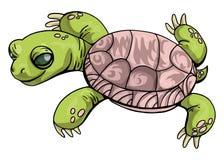 Het vectorbeeldverhaal van de Illustratie Centrale Aziatische schildpad op geïsoleerd in groene en roze kleuren op witte achtergr vector illustratie