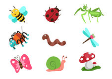 Het vectorbeeldverhaal van het insectenleven Stock Afbeelding