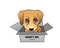 Het vectorconcept van de hondgoedkeuring Royalty-vrije Stock Foto's