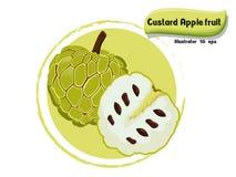 Het vectordiefruit van de Vlaappel op kleurenachtergrond wordt geïsoleerd, illustrator 10 eps Royalty-vrije Stock Fotografie