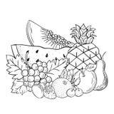Het vectorfruit van het schetsstilleven Royalty-vrije Stock Foto's