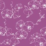 Het vectorhand getrokken naadloze patroon met gestileerde orchideetak voor uw ontwerp op de lichte achtergrond, patroon kan zijn stock illustratie