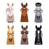 Het vectorhoofd van het hipsterpaard in glazen, boog Vlakke beeldverhaalstijl Royalty-vrije Stock Foto