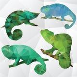 Het vectorkameleon van de kunst veelhoekige illustratie Stock Afbeeldingen