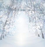 Het vectorlandschap van de de wintersneeuw Stock Foto