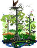 Het vectorlandschap van het moerasland of van Florida Everglades stock illustratie