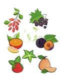 Het vectorontwerp plaatste: vruchten en bessen Royalty-vrije Stock Foto's