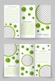 Het vectorontwerp van het brochuremalplaatje met groen element Royalty-vrije Stock Foto