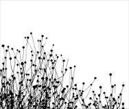 Het vectorsilhouet van het gras Stock Afbeeldingen