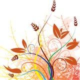 Het veelkleurige de kunstwerk van het bloemontwerp Stock Foto's
