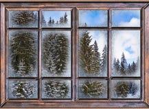 Het venster is behandeld met ijsvorst Stock Foto