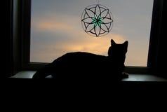 Het Venster van Cat Looking uit met Gebrandschilderd glas stock foto