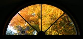 Het venster van de daling Stock Afbeelding