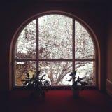Het venster van de de wintermening Stock Afbeeldingen