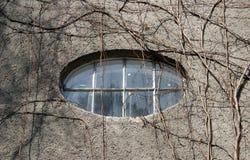 Het venster van de ellips stock foto