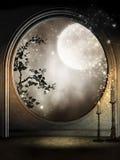 Het venster van de fantasie met wijnstokken Royalty-vrije Stock Afbeelding