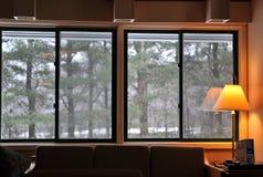 Het venster van de winter royalty-vrije stock afbeeldingen
