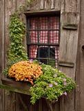 Het venster van het plattelandshuisje Stock Afbeelding