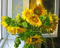 Het venster van het zonnebloemboeket Royalty-vrije Stock Foto's