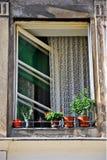 Het venster van Ljubljana Stock Foto