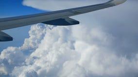 Het venster van het meningsvliegtuig stock videobeelden