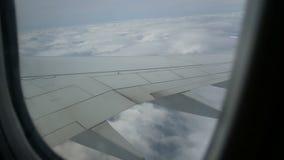Het venster van het meningsvliegtuig stock video