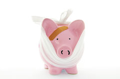 Het verband van Piggy Royalty-vrije Stock Afbeelding