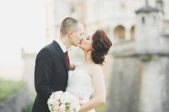 Het verbazen van gelukkig zacht modieus mooi romantisch Kaukasisch paar op het oude barokke kasteel als achtergrond Stock Foto's