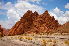 Het verbazende landschap van Argentinië in summe Stock Afbeelding