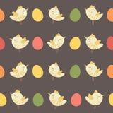 Het verbazende leuke naadloze uitstekende kleurrijke patroon van de vogelkip Stock Foto's