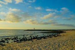 Het verbazende strand van de zonsonderganggalapagos met zeeleeuwen en Royalty-vrije Stock Afbeelding