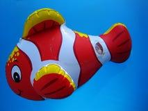 Het verbazende stuk speelgoed van clownvissen in het diepe blauwe macrobehang van het poolwater royalty-vrije stock afbeelding