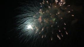 Het verbazende Vuurwerk toont Heldere plonsen van bloemen van begroeting tegen nachthemel De dag van de overwinning stock footage