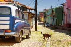 Het verdwaalde hond hangen rond dicht bij uitstekende Amerikaanse tweekleurige van car parkeerde in een keistraat in Trinidad Cub stock afbeelding