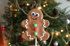 Het verfraaide Koekje van de Kerstmispeperkoek stock fotografie