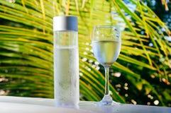 Het verfrissen van drinkbaar koud water in de fles Koud water met tropische achtergrond stock afbeeldingen