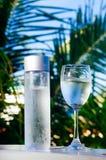 Het verfrissen van drinkbaar koud water in de fles Koud water met tropische achtergrond royalty-vrije stock afbeelding