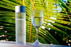 Het verfrissen van drinkbaar koud water in de fles Koud water met tropische achtergrond stock afbeelding