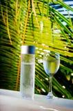 Het verfrissen van drinkbaar koud water in de fles Koud water met tropische achtergrond stock fotografie