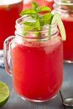 Het verfrissen van Eigengemaakte Watermeloen Agua Fresca Royalty-vrije Stock Afbeeldingen