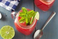 Het verfrissen van Eigengemaakte Watermeloen Agua Fresca Royalty-vrije Stock Foto's