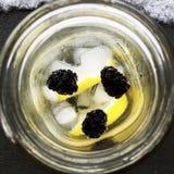 Het verfrissende van de het ijssneeuw van de bessen seltzer citroen ijzige glas Royalty-vrije Stock Afbeeldingen