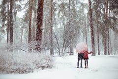 Het verhaal van de de winterliefde in rood Stock Fotografie
