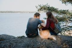 Het verhaal van de liefde Het lopen Mooie familie Embrance Ruwe collie stock foto's