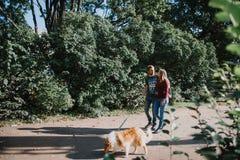 Het verhaal van de liefde stroll geliefde familie en hond toekomstige mamma en papa royalty-vrije stock fotografie