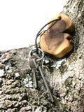 Het verhaal van sleutels Royalty-vrije Stock Foto