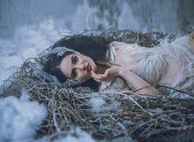 Het Verhaal van Zwaanmeer De meisjesvogel ligt in het nest, en glimlacht Een sprookjebeeld van een koningin van zwanen, een kostu Royalty-vrije Stock Afbeeldingen