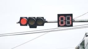 Het verkeerslicht wordt groen stock videobeelden