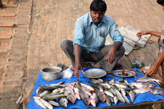 Het verkopen van een vis op vissenmarkt Stock Afbeeldingen