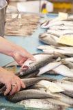 Het verkopen verse vissen op Mediterrane vissenmarkt royalty-vrije stock fotografie